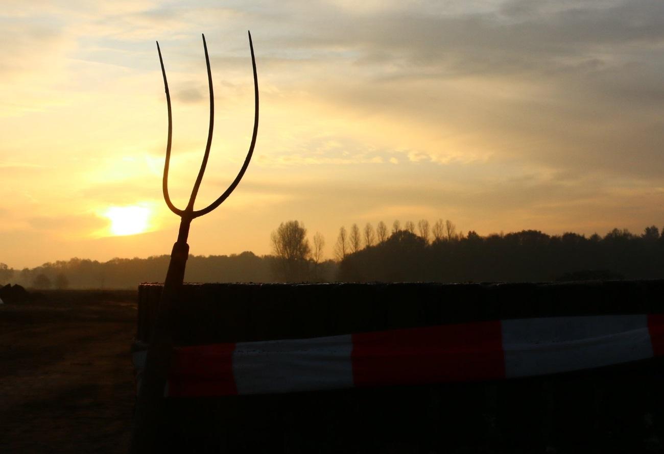 Koe Safari hooivork op het erf
